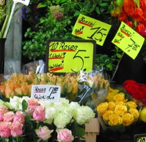 flower_price_light